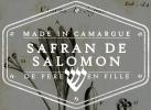 logo_Safran de Salomon
