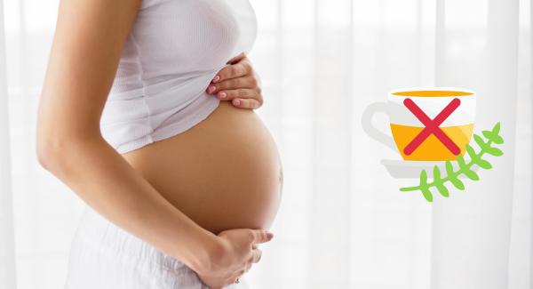 enceinte tisanes déconseillées