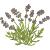 florales-calmer-miel naturel