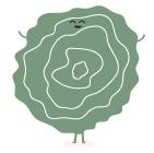 batavia-salade-dessin