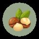 bienfaits de l'huile de macadamia pour les cheveux