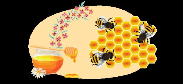 origines du miel