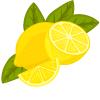 purifier-citron